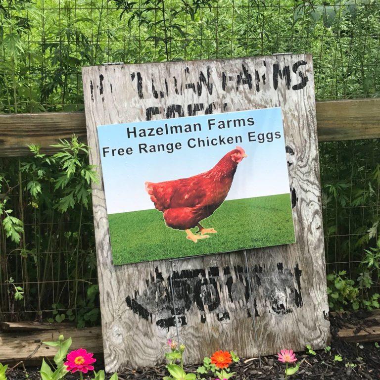 Hazelman Farms